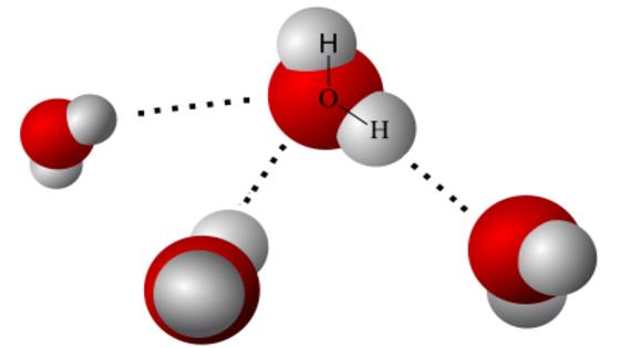 Una molécula muy especial | Un planeta azul: la hidrosfera