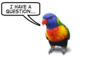emtic - Subtitular vídeos con Jubler